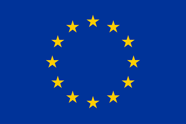Mission d'observation électorale de l'Union européenne  Sénégal 2019