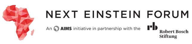 Next Einstein Forum (NEF)