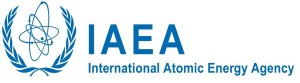 International Atomic Energy Agency Reviews Niger's Nuclear Power Infrastructure Development