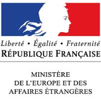 Bilan de la campagne STAFE 2019 (Soutien au tissu associatif des Français de l'étranger)