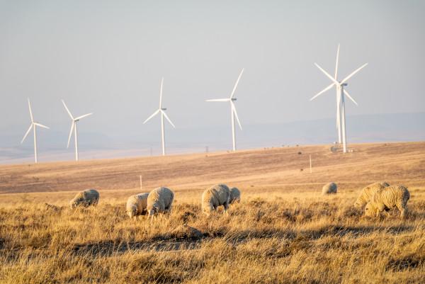 BTE Renewables