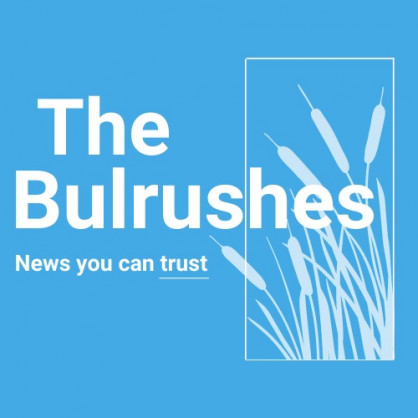 The Bulrushes