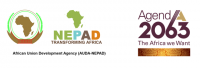 New Partnership for Africa's Development (NEPAD)