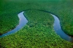 Congo River.jpg