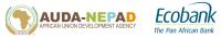 African Union Development Agency-NEPAD (AUDA-NEPAD)