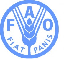 The United Nations Food and Agriculture Organization (FAO) and the Netherland's Development Finance Company (FMO) partner to improve agriculture financing in developing countries