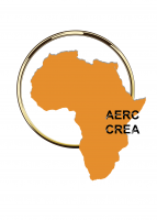 African Economic Research Consortium to Host a Virtual Plenary Session on: COVID-19 Pandemic and Public Finance in Africa: Challenges and Opportunities