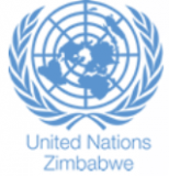 United Nations Country Team (UNCT), Zimbabwe