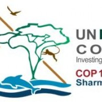 Update on the UN Biodiversity Conference (17– 29 November 2018, Sharm El Sheikh, Egypt) APO Group – Africa-Newsroom: latest news releases related to Africa
