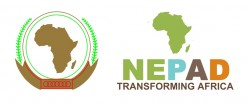 New Partnership for Africa's Development (NEPAD)