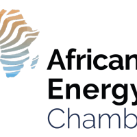 Energy industry congratulates President Nyusi of Mozambique and supports oil and power capacity building initiatives in Africa