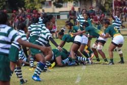 Zimbabwe rugby.jpg