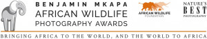 AWF and Nature's Best Photography  Announce the Benjamin Mkapa African Wildlife Photography Awards Call for Entries