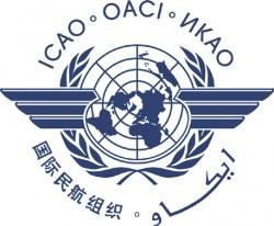 International Civil Aviation Organization (ICAO)