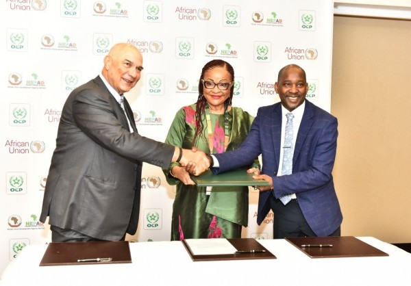 APO Group - Africa Newsroom / Press release | The African