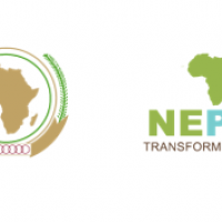 """Youth entrepreneurship promotion at the heart of """"Africa Talks Jobs"""" conference ©Mulugeta Gebrekidan 
